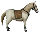 Bestand:Pony.png