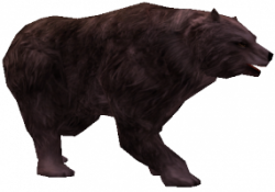 Hongerige Grizzly.png